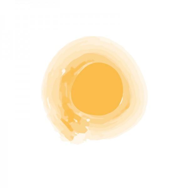 LAC_Brand-sun